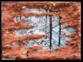 Pocsolya (falapon kerámia és üveg) 50x35 cm